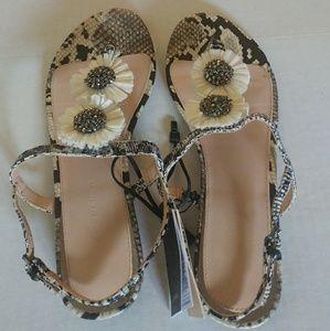 ZARA Leopard Print Leather Sandal Flat